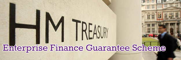 Enterprise-Finance-Guarantee-Scheme-Page